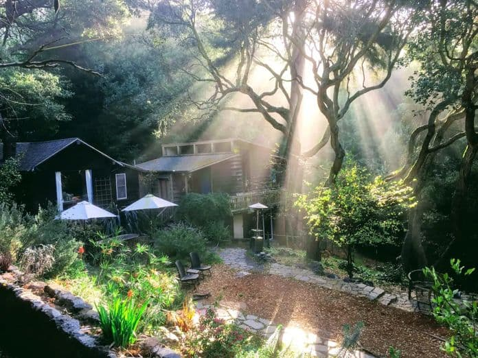 Airbnb Berkeley A House in the Woods