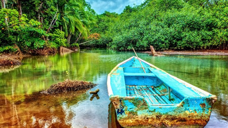 Pet Friendly Airbnb Costa Rica