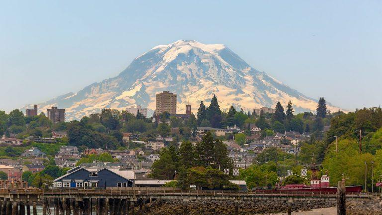 Pet Friendly Airbnb Tacoma