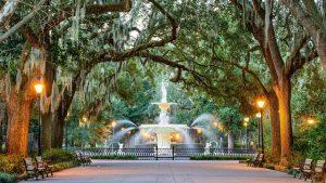 Pet Friendly Airbnb Savannah
